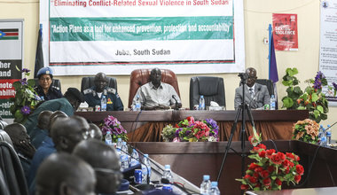 unmiss unpol senior women protection adviser south sudan ssnps action plan crsv sexual violence