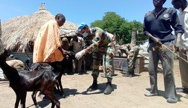 UNMISS protection of civilians veterinary livestock Renk upper nile peacekeeping united nations peacekeepers