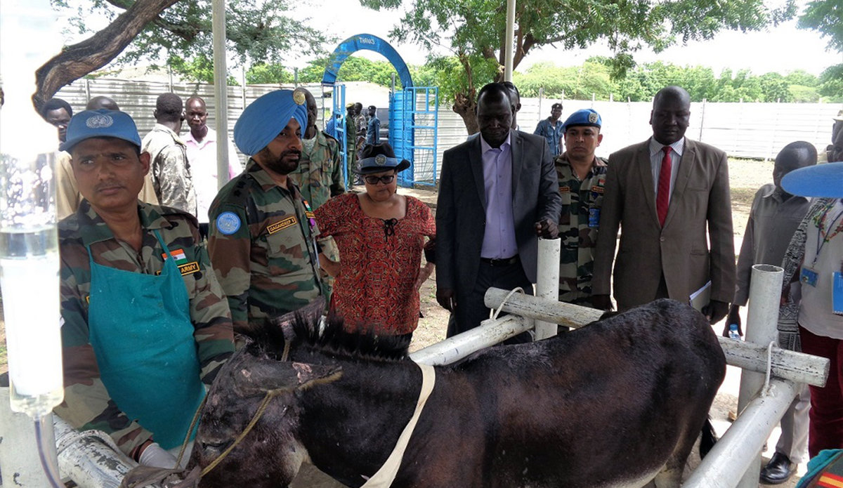 Indian peacekeepers give Malakal vet hospital a facelift | UNMISS