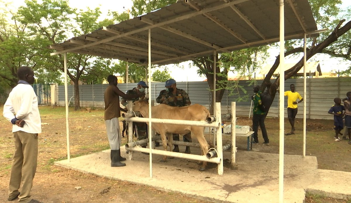 unmiss south sudan malakal indian peacekeepers veterinary camp covid-19 awareness session