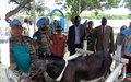 Indian peacekeepers give Malakal vet hospital a facelift