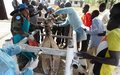Peacekeepers in Malakal train community animal health workers