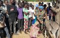 Boost for livestock farmers in Malakal as UNMISS peacekeepers train animal health workers