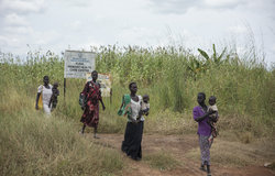 Thousands of IDP's in Kuda, a village 54 kilometers west of Juba, are appealing for urgent humanitarian assistance
