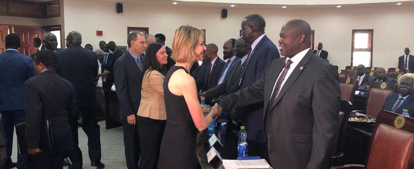 Members of the UN Security Council meet with opposition leader Riek Machar and other signatories to the revitalised peace agreement shortly after meeting with President Salva Kiir