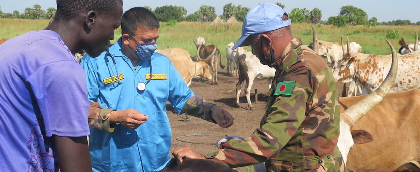unmiss south sudan wau vets bangladesh cattle livestock